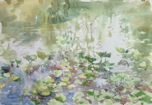 Christine Lashley Lily Nuance 14x20 Watercolor on Paper