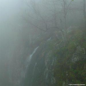 Fred Eberhart, Fall to Fog, digital photograph