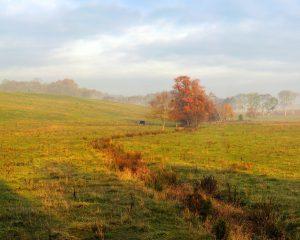 Fred Eberhart, Morning on a Culpepper Field, digital photograph