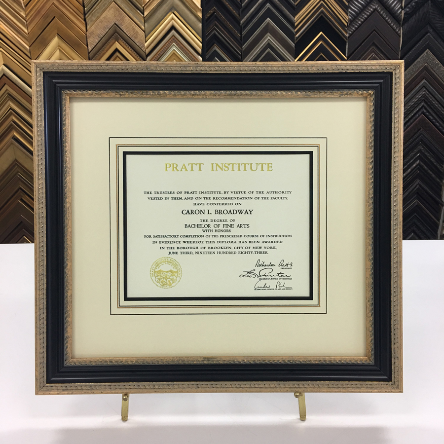 Framed BFA Degree with French Lines